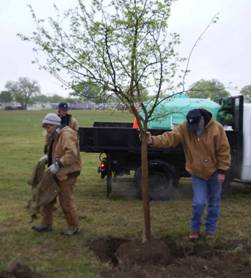 Ford Park Tree Planting